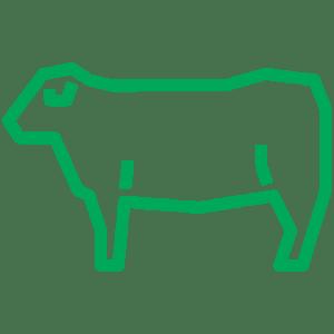 cow-480